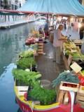 172 Floating Green Markettopaz.jpg