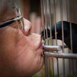 Kin: Bird Lover