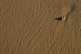 2006 August - Sand Series