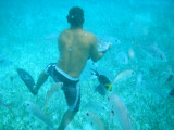 The snorkeling tour leader caught a sting ray with his bare hands.