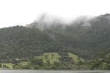 Huia Hills on a misty morning 0557.JPG