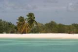 beach-Barbuda