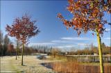 Groene Long Kuurne - winter 2009
