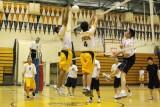 AHS Volleyball 2008