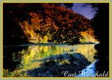 Pine Creek at PineTrail