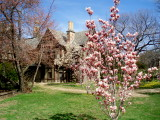 Brookville Spring.jpg