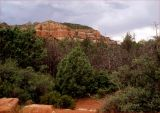 Red rocks and fireblackened trees