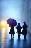 morning rain 1
