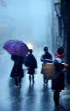 morning rain 3