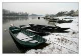 La Loire et la région de St Florent Le Vieil