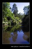 The Lake #5, Portmeirion