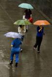 Rainy Day - Beijing