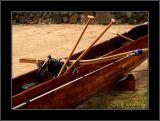 Hualalai With Paddles