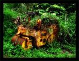 Jungle Paver
