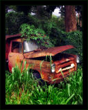 Red Rust Truck