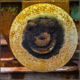 Looks like a smiling face on the backside of my banjo!