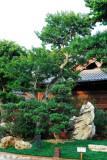 Nan Lian Garden 15