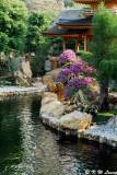 Nan Lian Garden 10