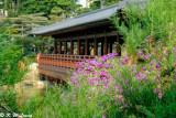 Nan Lian Garden 11