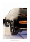 Mondial de l'Automobile 2008 - Paris 13