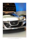 Mondial de l'Automobile 2008 - Paris 31
