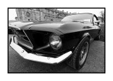 Ford Mustang, Vincennes
