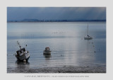 Brittany, Cancale 4