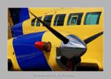 Salon Aeronautique du Bourget 2009 - 5