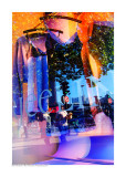 Paris Show Windows 44