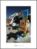 Cows in Lisboa 28