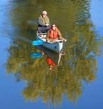 Canoe In A Tree 20327