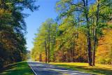 Natchez Trace Parkway 25088