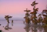 Lake Martin At Dawn 26055