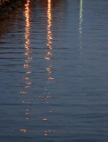 Reflections 28361