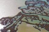 Wetlands 29917