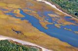 Wetlands 29828