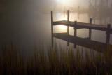 A Dock & Foggy Night 20081218