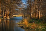 Guadalupe River Evening 20090311
