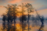 Lake Martin Sunrise 45810