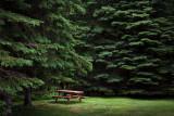 Northwoods Campsite 20090703