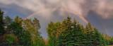 Wawa Rainbow 03163-5