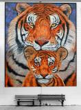 Giant Tigers P1010153