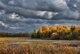 Autumn Along Irish Creek 23104