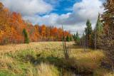 Autumn Landscape 20101002