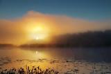 Irish Creek Foggy Sunrise 20101015