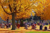 Autumn Cemetery 20101016