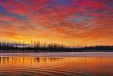 Irish Creek Sunrise 20101119