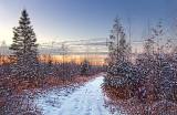 Snowy Rideau Trail At Sunrise 03335