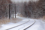 Tracks On Tracks 04879