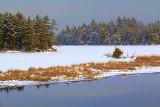 Loon Lake 05181